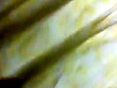 Flada Amarilla Flores