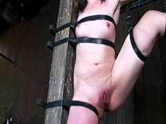 Sarah Shevon gets tied up and pleasured