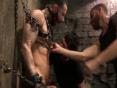Bondage stud submissive gags while dicksucked